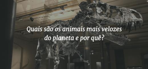 """Capa do post com o título """"Quais são os animais mais velozes do planeta e por quê?"""" e um esqueleto de T-Rex ao fundo."""