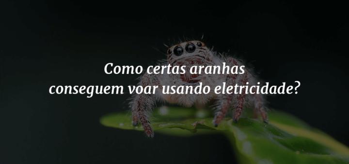 """Imagem de capa com uma aranha ao fundo, em cima de uma folha, e o título """"Como certas aranhas conseguem voar usando eletricidade?"""" à frente."""