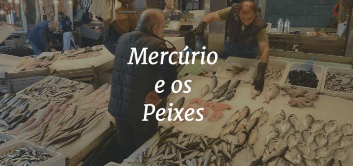"""Capa do artigo escrito """"Mercúrio e os Peixes"""" e com um mercado de peixes ao fundo."""